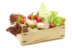 Mix of cabbage, lettuce and turnips in a wooden crate Stock Photos