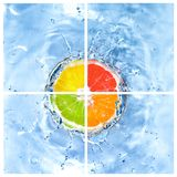 Mix of citrus dropped into water with bubbles Stock Photography