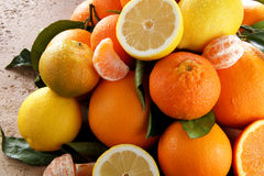 Mix citrus fruit Stock Photography