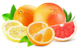 Mix of citrus fruits isolated on the white background Royalty Free Stock Image