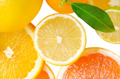 Mix of citrus slice Stock Images
