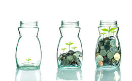 Mix coins and seed in clear blottle on white background,Business Stock Photography