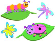 Mix of Colorful Bugs. Here is a cute collection of colorful bugs Stock Photos