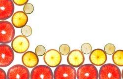Mix of colorful citrus fruit on white. Background Royalty Free Stock Image