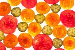 Mix of colorful citrus fruit on white. Background Stock Photos