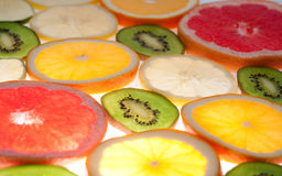 Mix of colorful citrus fruit on white. Background Royalty Free Stock Photography