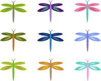 Mix of Colorful Dragonflies Stock Image