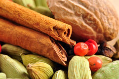 Mix of colorful natural spices. Beautiful arrangement of whole natural colorful spices, cinnamon, cardamom, nutmeg, pink pepper and clove Stock Photos