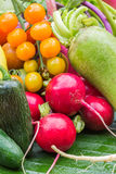 Mix colorful vegetables Royalty Free Stock Image
