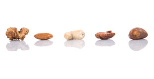 Mix Culinary Nuts IX Stock Images