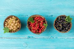 Mix of currant berries black, red and white in a bowls on blue wooden background. summer food concept. flat lay. Top view stock images