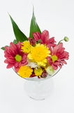 Mix cut flower in the glass Stock Images