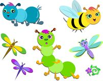 Mix of Cute Insects Royalty Free Stock Image