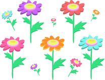 Mix of Daisy Flowers Royalty Free Stock Photos