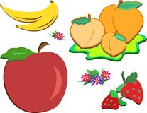 Mix of Delicious Fruits and Flowers Stock Image