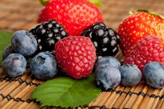 Mix of different berries Stock Photos