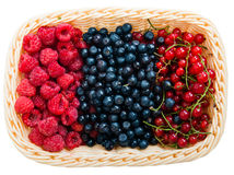 Mix of different berries. In basket Stock Photo