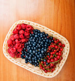 Mix of different berries. In basket Royalty Free Stock Photo