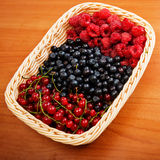 Mix of different berries Stock Images