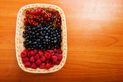 Mix of different berries Royalty Free Stock Images