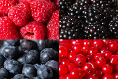 Mix of different berries close-up Royalty Free Stock Photography