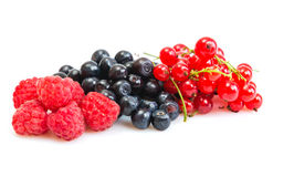 Mix of different berries Royalty Free Stock Image
