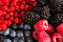 Mix of different berries Royalty Free Stock Photography