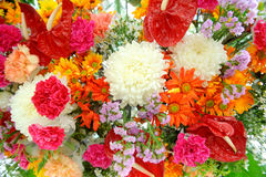 Mix of different flowers Royalty Free Stock Photography