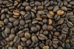 Mix of different types of roasted coffee beans. Background royalty free stock image