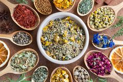 Mix of dried herbs on wooden spoons, top view. Mix of dried herbs horsetail, chamomile, cornflower, rose petals, nasturtium seeds, mullein, alchemilla, tilia Stock Image