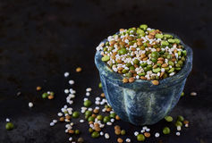 Mix of dried legumes and cereals Stock Photo