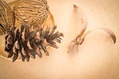 Mix of dried plant ornament on wooden background Stock Photography