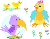 Mix of Ducks, Chicken, Parrot, and Flowers Stock Photography
