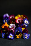 Mix of edible flowers Stock Photo