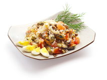 Mix from eggs, mussel, salmon filet, rice and dill. On the squared plate over white background Stock Photography