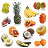 Mix of exotic fruits on white background Stock Photos