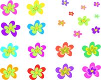 Mix of Five Point Flowers Royalty Free Stock Images