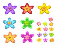 Mix of Five Pointed Flowers Royalty Free Stock Photo