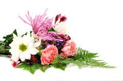 Mix  flower Stock Images