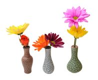 Mix flowers Royalty Free Stock Photos