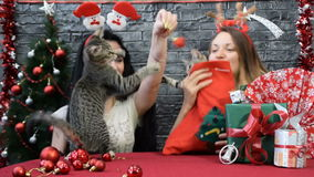 Mix of four scenes, beautiful girls with a cats in holiday spirit surrounded by New Year`s decoration stock video