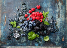 Mix of fresh berries with ice Stock Image