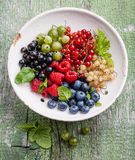 Mix of fresh berries Stock Photography