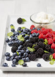 Mix of fresh berries Royalty Free Stock Images