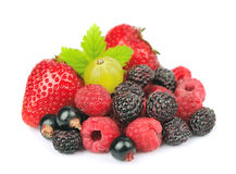 Mix of fresh berry Stock Photo