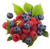 Mix of fresh berry Royalty Free Stock Images