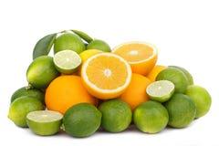 Mix of fresh citrus fruits Royalty Free Stock Photos
