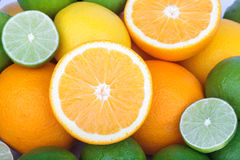 Mix of fresh citrus fruits Stock Photography