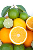 Mix of fresh citrus fruits Royalty Free Stock Photography