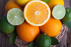 Mix of fresh citrus fruits Stock Images